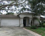 1921 Citrus Orchard Way, Valrico image