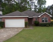 8374 Ivy Mill, Tallahassee image