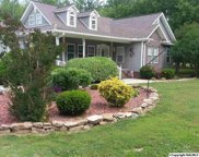 314 Star Point Road, Guntersville image