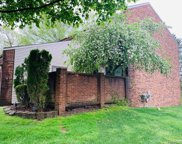 300 WILLOW GROVE, Rochester Hills image