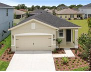 11131 Abaco Island Avenue, Riverview image