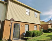262 Mayflower Ln N, Madison image