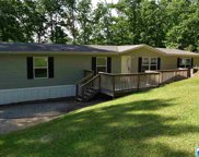 55 Shady Acres Dr, Odenville image