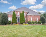 13724  Thompson Place Drive, Mint Hill image