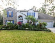 16116 Colchester Palms Drive, Tampa image