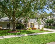 1408 Clarion Drive, Valrico image