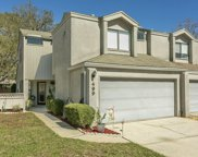 499 SELVA LAKES CIR, Atlantic Beach image
