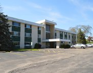 375 West Winchester Road Unit 312, Libertyville image