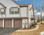 2796 Weeping Willow Drive Unit D, Lisle image