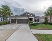17631 Bright Wheat Drive, Lithia image