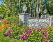 60 Spring Hollow Unit #30, Roslyn image