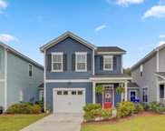133 Fulmar Place, Charleston image