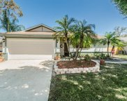 3648 Scarlet Tanager Drive, Palm Harbor image