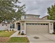 7151 Forest Mere Drive, Riverview image