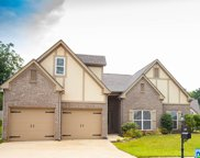 6355 Letson Farms Rd, Bessemer image