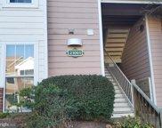 21001 Timber Ridge   Terrace Unit #204, Ashburn image
