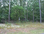 7133 Story Drive, Appling image