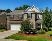 14314  Green Birch Drive Unit #11, Pineville image