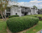 901 Woodland Village Unit 901, Homewood image