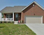 17114 Creek Vista Ct, Louisville image