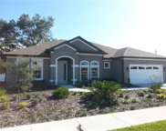 1319 Fountain Hills Court, Winter Park image