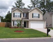 125 Towering Pine Drive, Summerville image