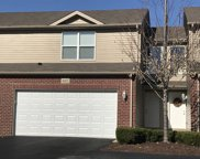 16602 Willow Walk Drive, Lockport image