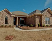 8005 Brightwater Way, Spring Hill image