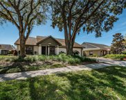15011 Redcliff Drive, Tampa image