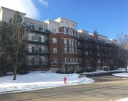 840 Weidner Road Unit 308, Buffalo Grove image