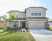 11439 Amapola Bloom Court, Riverview image