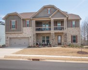 867  Tyne Drive, Fort Mill image