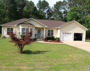 5621 Seddon Shores Dr, Pell City image