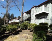 29621 Red Oak Ct Unit 5, Hayward image