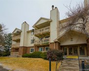 481 South Kalispell Way Unit 301, Aurora image