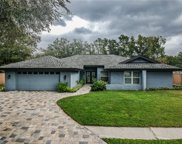 14815 Saint Ives Place, Tampa image