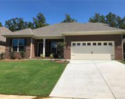 712  Cherry Hills Place, Rock Hill image