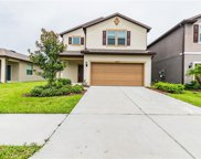6417 Yellow Buckeye Dr, Riverview image