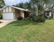 14305 Chaparell Place, Tampa image