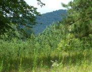 LT 14 Hillside Trace, Blairsville image