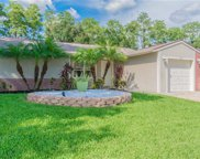 5711 Carrollwood Meadows Drive, Tampa image