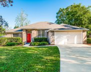 11910 COLLINS CREEK DR, Jacksonville image