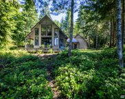 512 Rhododendron Dr, Quilcene image