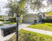 18114 Sandy Pointe Drive, Tampa image