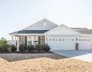 113 Hot Springs Court, Holly Springs image