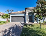 11858 Frost Aster Drive, Riverview image