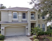 4892 Ridgemoor Circle, Palm Harbor image
