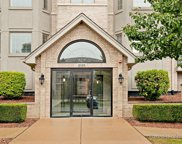 8505 Woodward Avenue Unit 401, Woodridge image