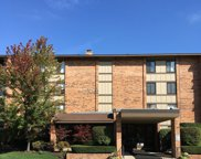 201 Lake Hinsdale Drive Unit 111, Willowbrook image