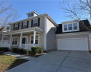 15208  Carrington Ridge Drive, Huntersville image